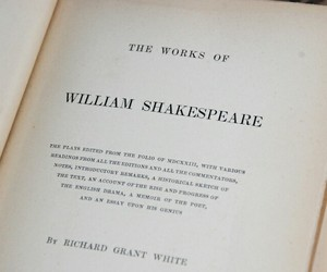shakespeare and aesthetic image