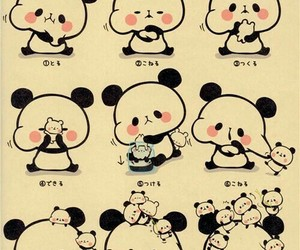 cute and panda image