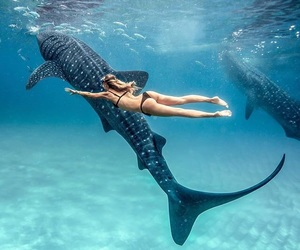 bangkok, ocean, and paradise image