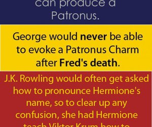 harry potter, fact, and quotes image