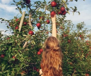 girl, apple, and nature image