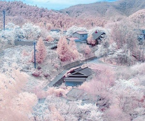 aesthetic, sweet, and japan image