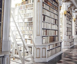 book, library, and white image