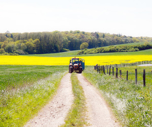 country road, summer, and tractor image