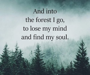 mind, quote, and soul image