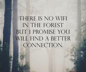 forest, peace, and quote image