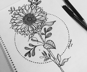 drawing, flowers, and draw image