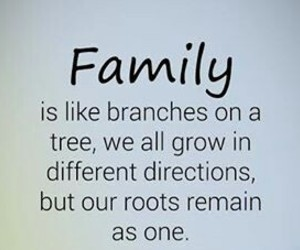 branches, family, and one image