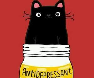 cat and antidepressant image