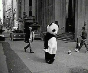 panda, alone, and sad image