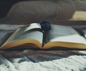 blue, book, and nice image