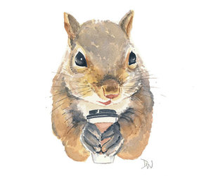 animal, clever, and coffee image