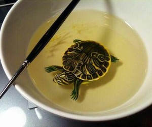 turtle, amazing, and art image