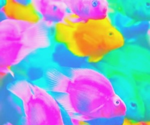 colors, fish, and pastel image