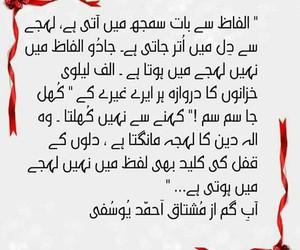 pakistan, urdu, and quote image
