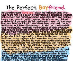 meme, tumblr, and perfect boyfriend image