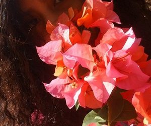 flowers, pink, and moana image