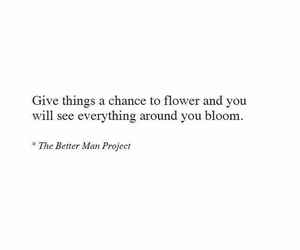aesthetic, bloom, and chances image