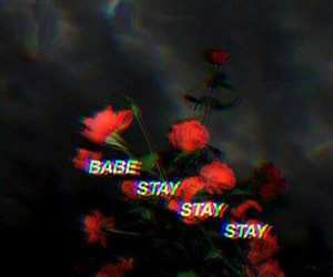 quote, babe, and stay image