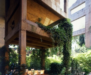 architecture and nature image
