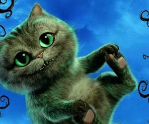 gato sonriente bebe image