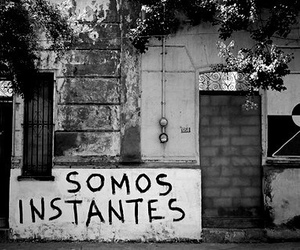 quote, frases, and momentos image