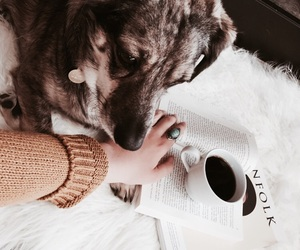 dog, coffee, and puppy image