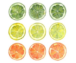 lime, citrus, and drawing image