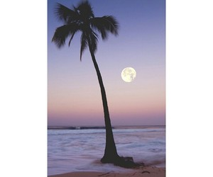 beach, moon, and ocean image