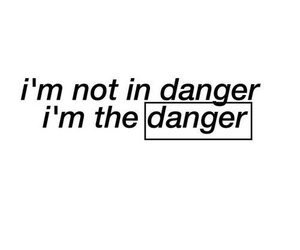 danger, quotes, and words image