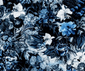 blue, floral, and background image