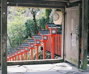 japan, nature, and photography image