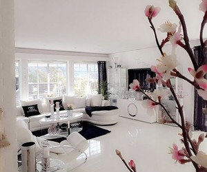 elegant, home, and living room image