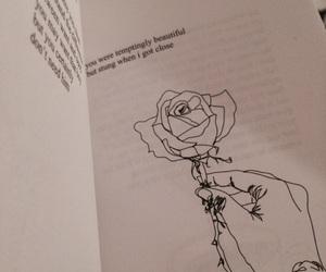poem, rose, and mybook image