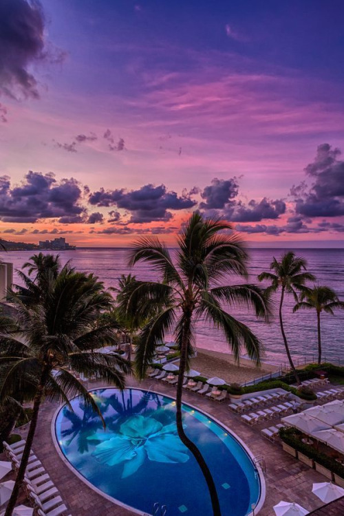beach, pool, and sunset image