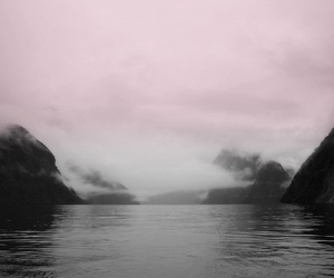 pink, nature, and grunge image