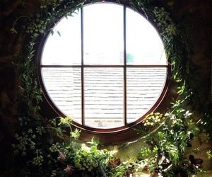 window, beautiful, and green image