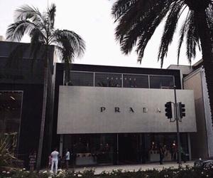 Prada, theme, and luxury image