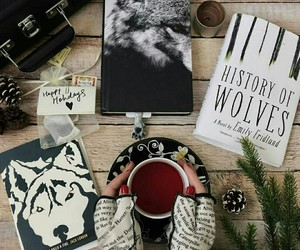 atmosphere, books, and cozy image