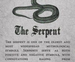 serpent, snake, and slytherin image