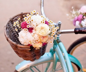 flowers, bike, and bicycle image