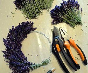 craft, diy, and lavender image