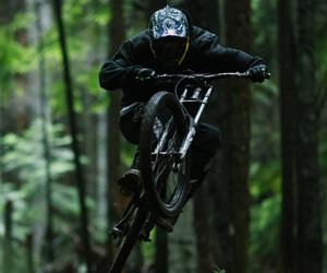 bike, forest, and brandon semenuk image
