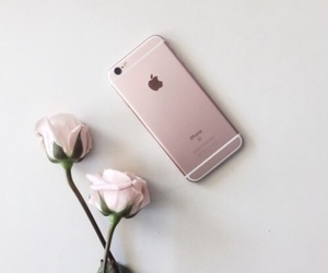apple, iphone, and rose image
