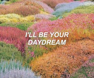quotes, aesthetic, and daydream image