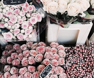 flowers, pretty, and cute image