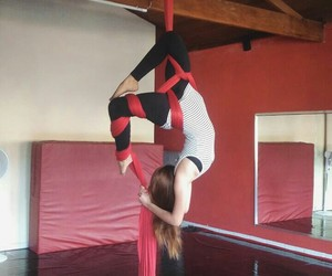 aerial, art, and circus image