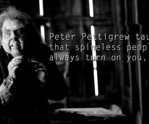 harry potter and peter pettigrew image
