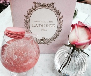 pink, laduree, and rose image