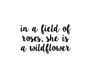 calligraphy, quotes, and tumblr image